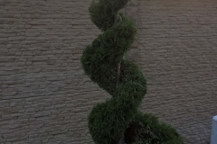 portfolio_green_veles_91