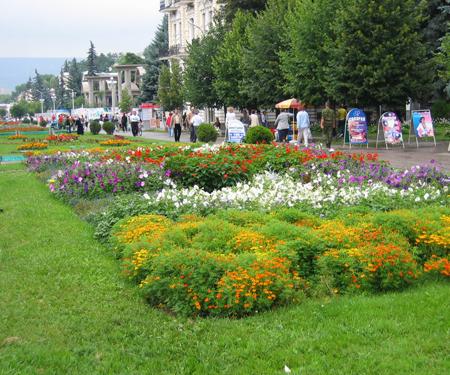 Цветники-Green Veles